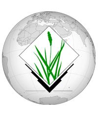 Globe with GRASS logo